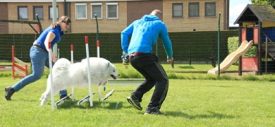 Agility workshop 2017