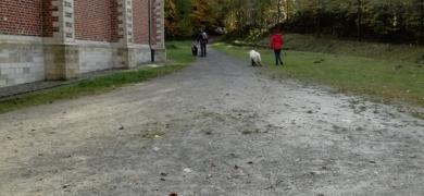 Herfst_5